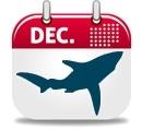 Où plonger en Décembre ?